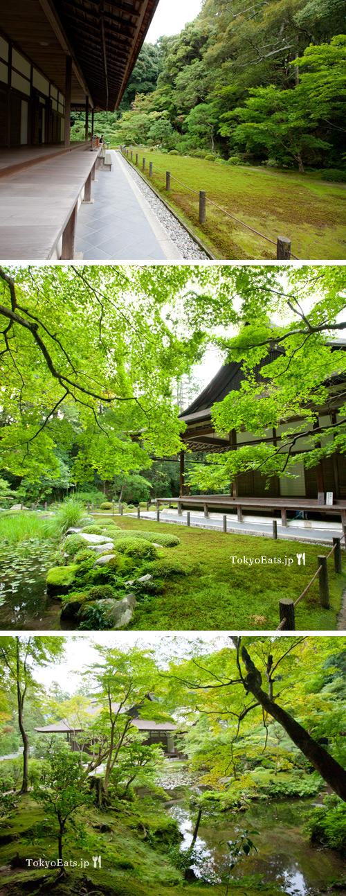 Kyoto Trip